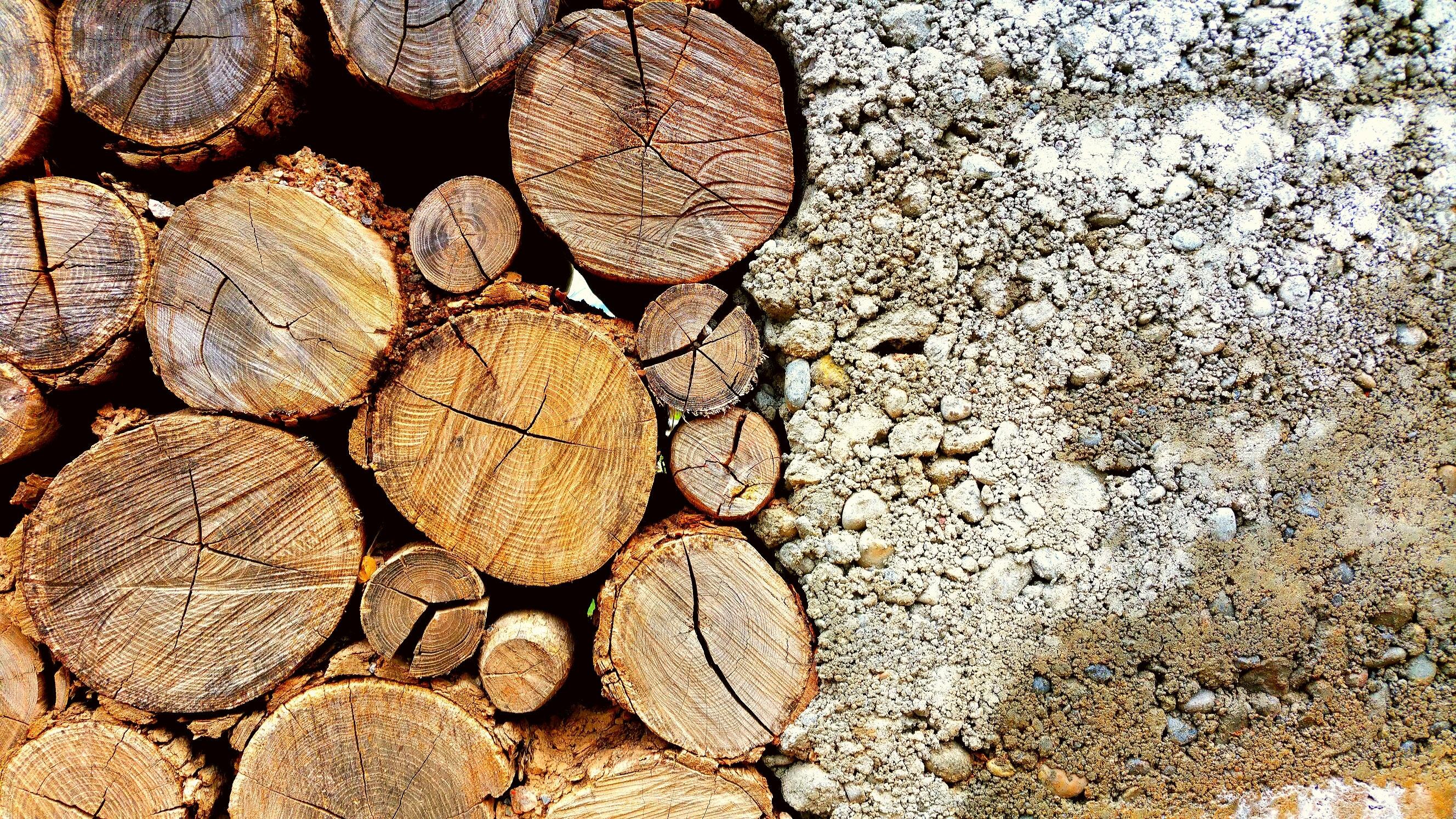 Wszystko, co powinieneś wiedzieć o frezarce do drewna.